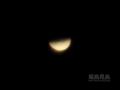 [天体]Venus20120327