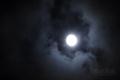 [月景色]栗名月