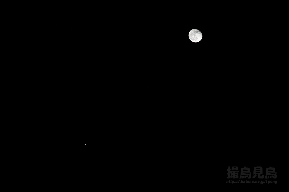 moon&jupiter20121101