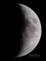 [天体]moon20121119_192719