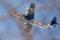 里山に飛行艇(US-2)
