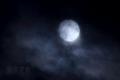 [月景色]紗十三夜
