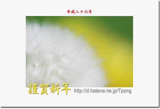 f:id:Tpong:20140101082140j:image