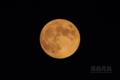 [天体]moon20141008_173915