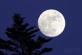[月景色][風景]小望月