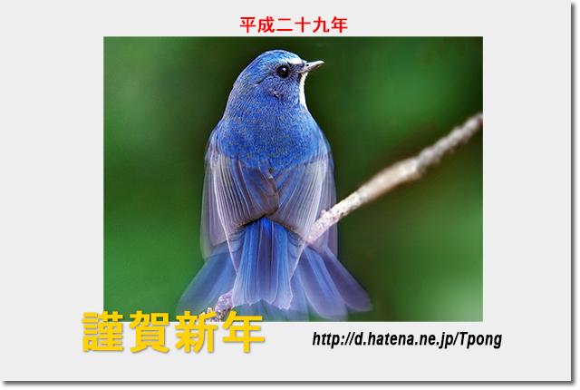 f:id:Tpong:20170101232034j:image