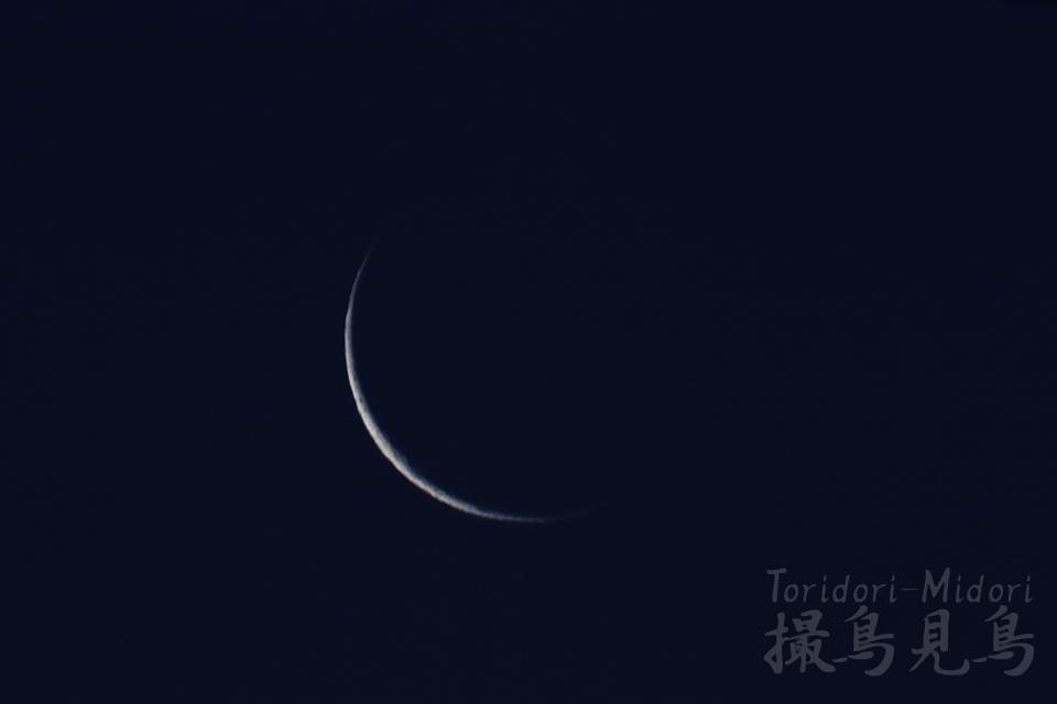 moon20190203_061141