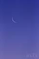 [月景色][風景]柳眉の月