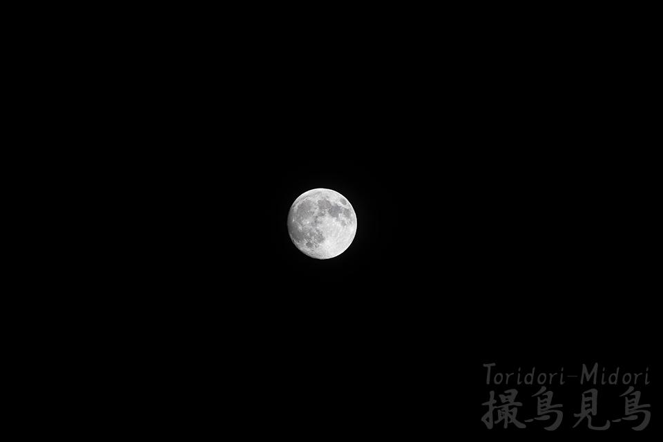 moon20190218_6Dmk2_400