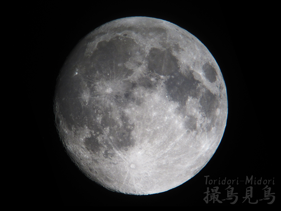 moon20190218_digisco