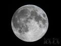 [天体]moon20190219_230718