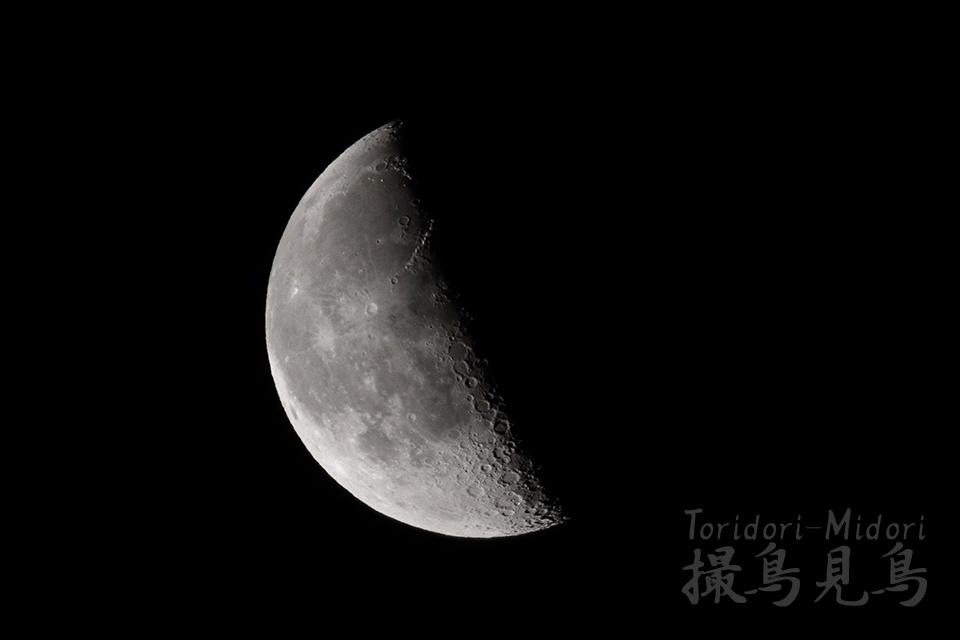 moon20190227_050228