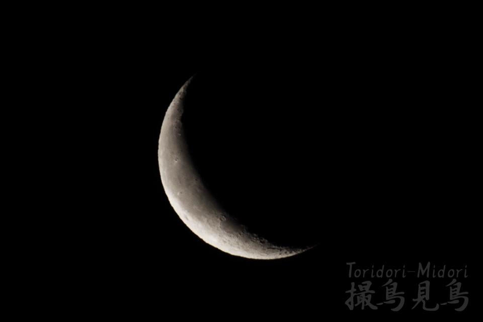 moon20190302_0504
