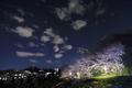 [風景][桜]夜雲