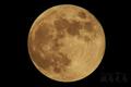 [天体]moon20190617_203130