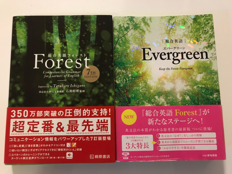 Evergreen-Forest.jpg