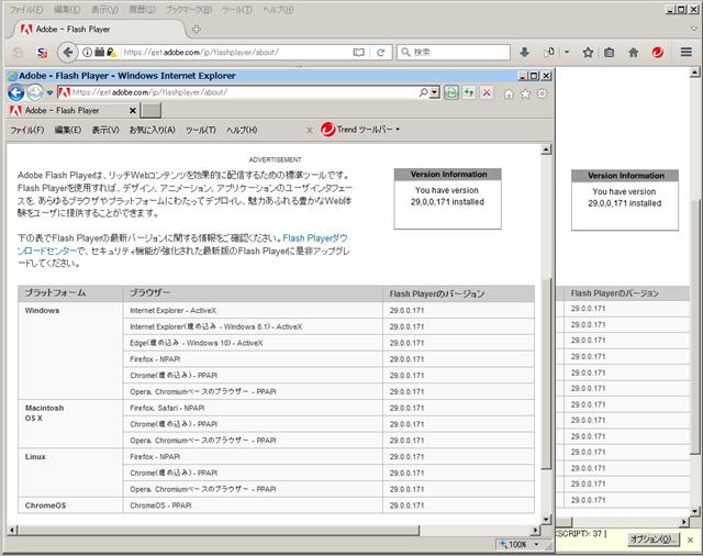 Adobe Flash Player 29.0.0.171 のテスト。
