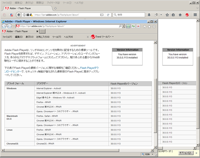 Adobe Flash Player 30.0.0.113 のテスト。