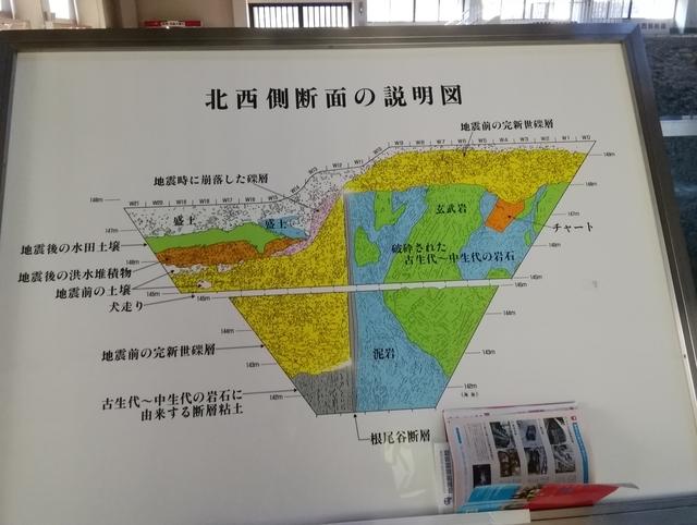 根尾谷地震断層観察館(樽見鉄道水鳥駅より徒歩5分)