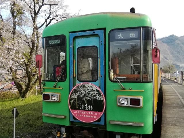 樽見鉄道観桜薄墨桜号(復路)