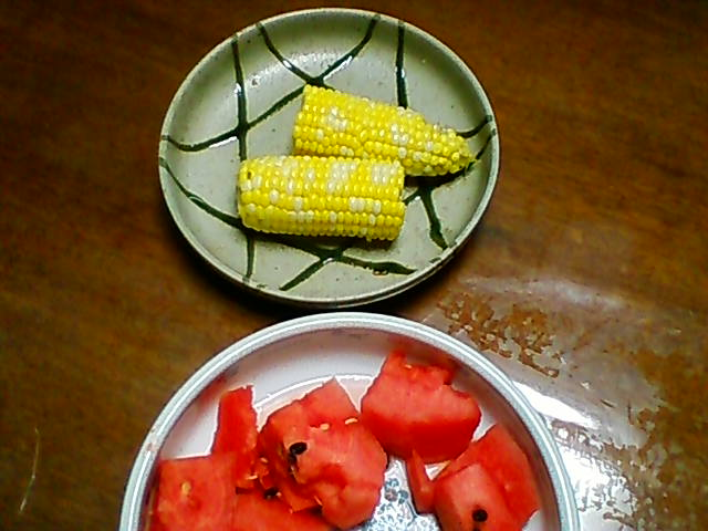 トウモロコシ 2019