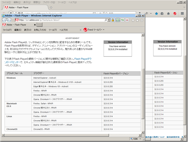 Adobe Flash Player 32.0.0.314 のテスト