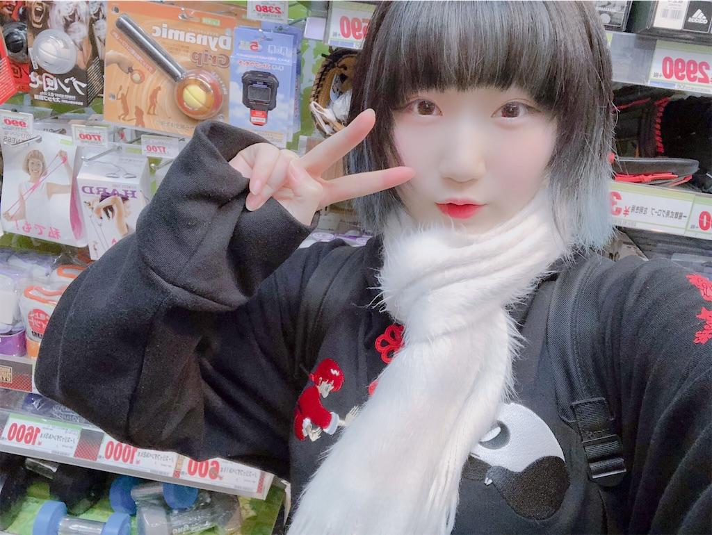 f:id:Tsumu_3Chi3:20191231193617j:image