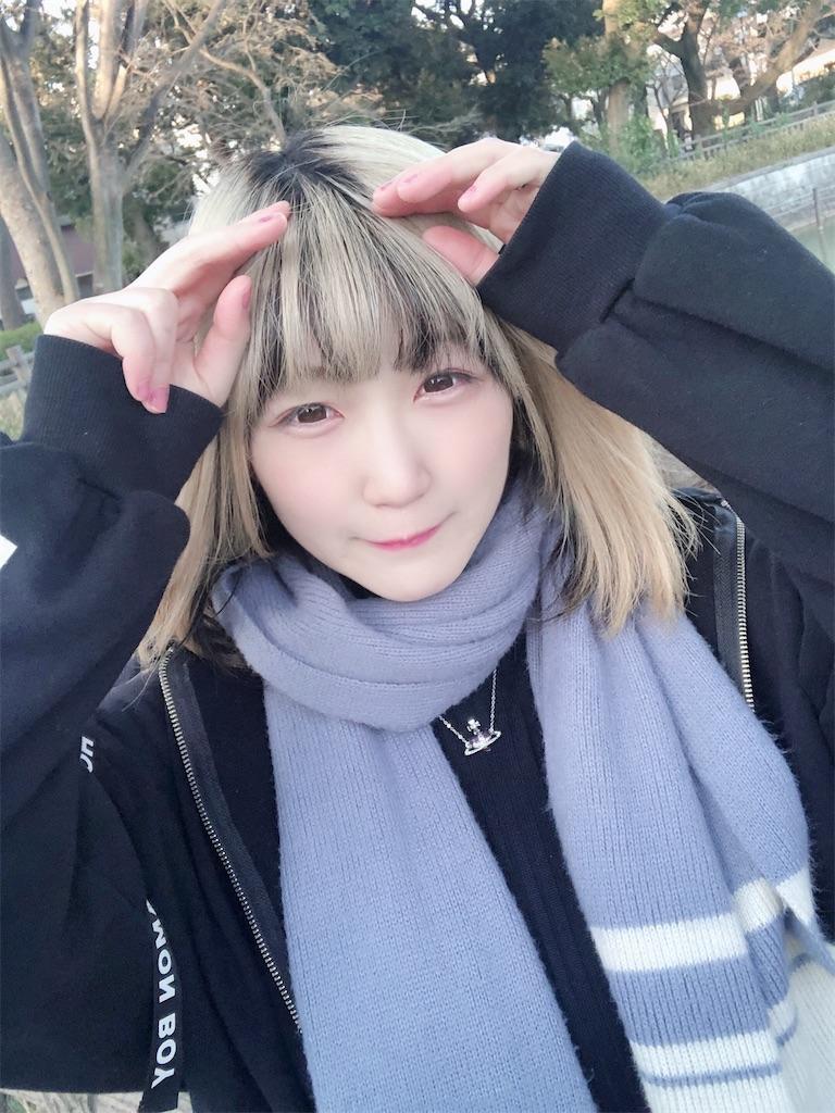 f:id:Tsumu_3Chi3:20210222164457j:image