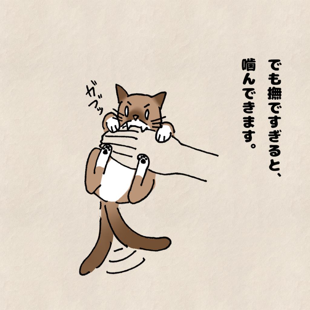 f:id:Tsunatsuna:20200828212530p:image