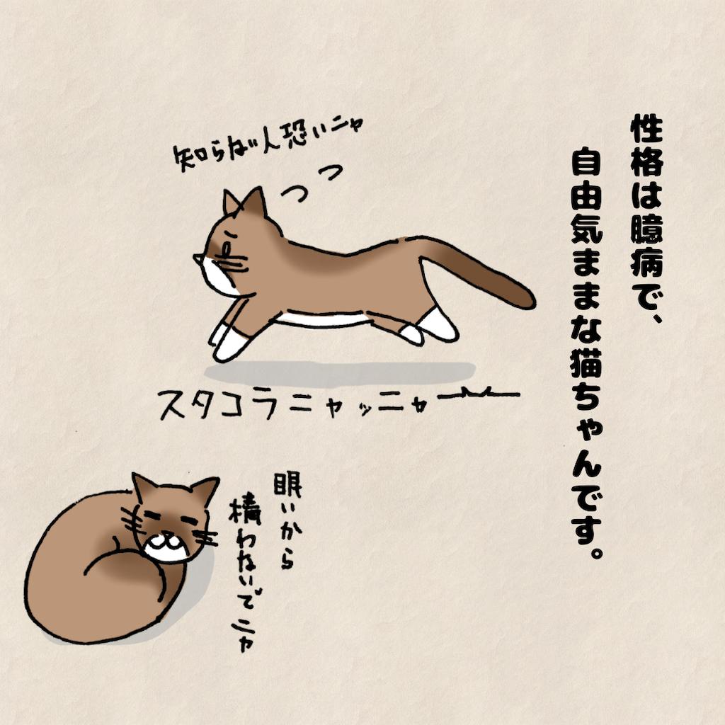 f:id:Tsunatsuna:20200828212543p:image