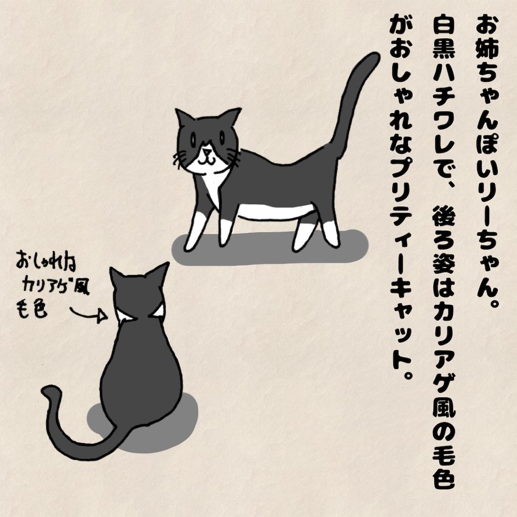 f:id:Tsunatsuna:20200906215457p:image