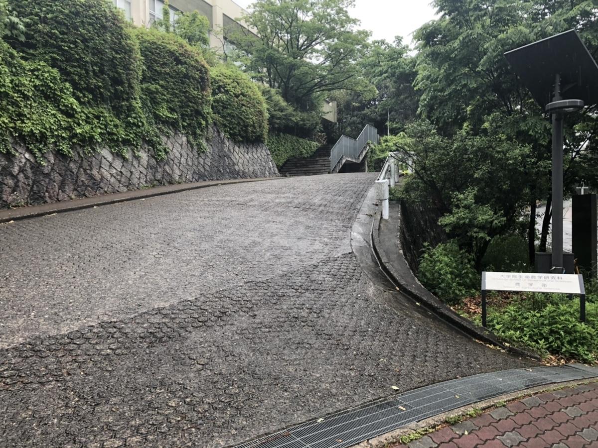 f:id:TsutayaP:20210513223414j:plain