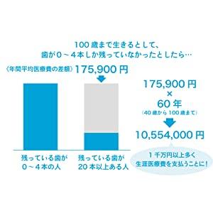 f:id:Tulip01:20201128211030j:plain