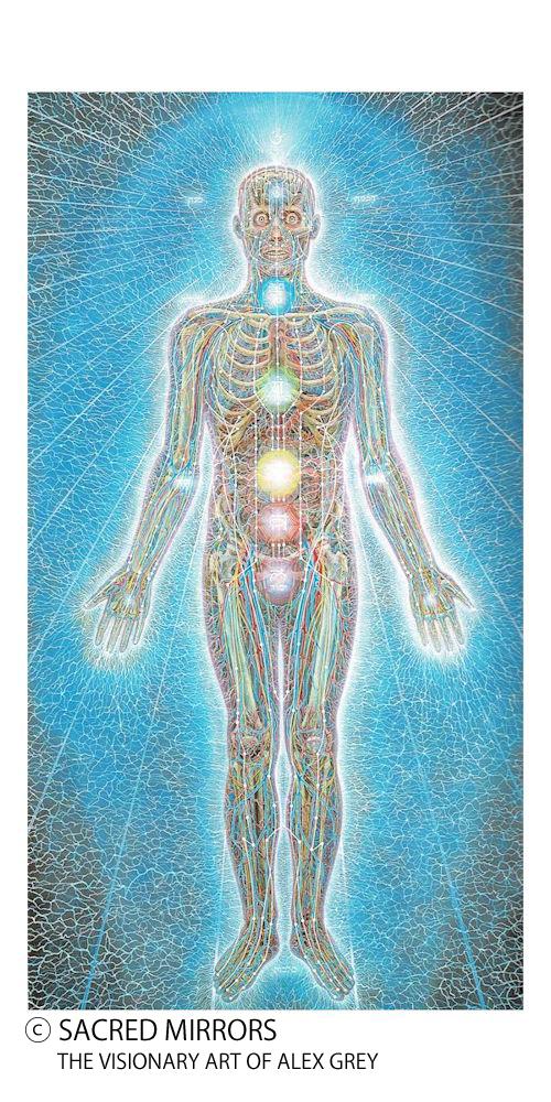 肉体とチャクラとナーディの参考イメージ