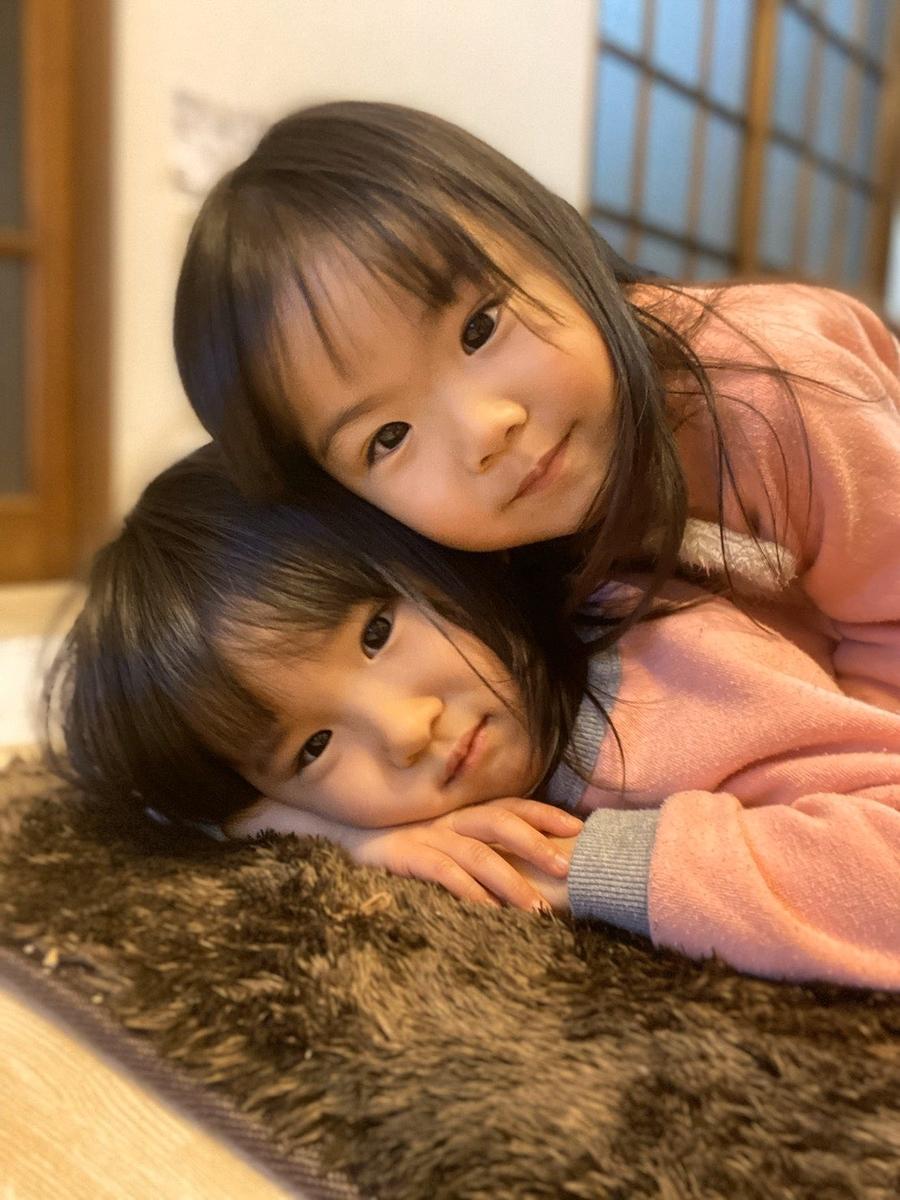 f:id:Twinspapa:20200201010512j:plain
