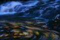 京都新聞写真コンテスト 瑠璃渓落葉の舞