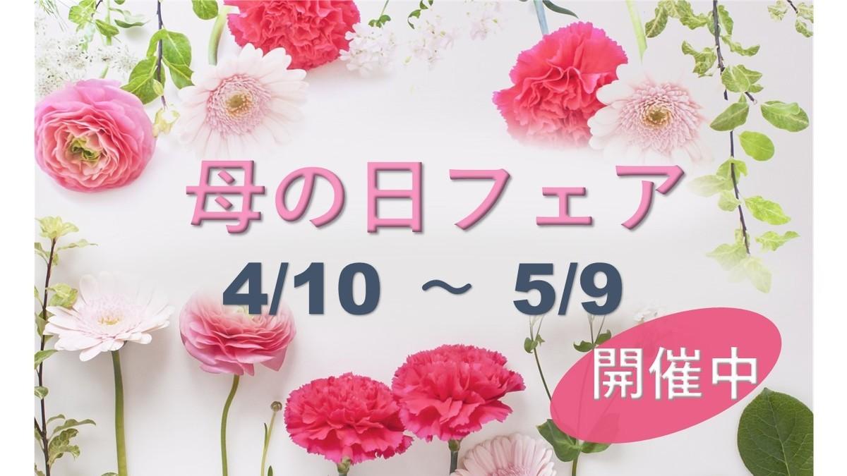 f:id:UV-Flower:20210419115101j:plain