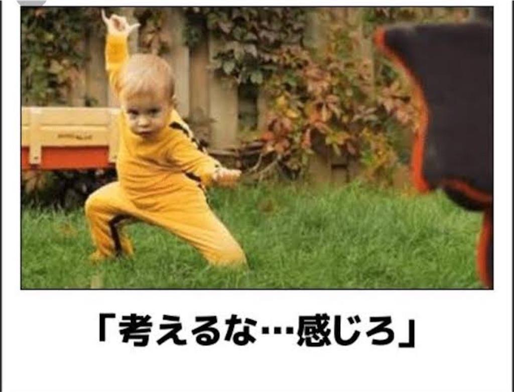 f:id:UedaYogaHiroki:20190622024611j:image