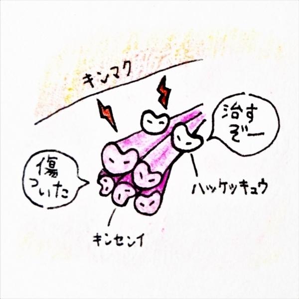 f:id:Uki-3:20180411201015j:plain