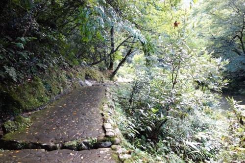 鶴仙渓遊歩道