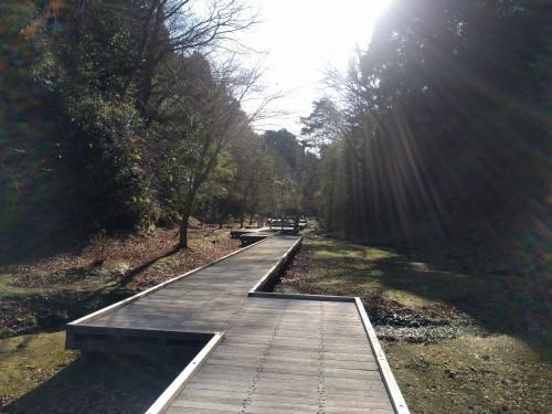 清水渓流広場の水道路