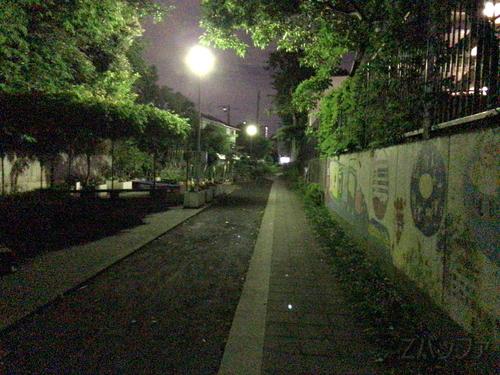 iPhone7カメラによる夜景画質はノイジー