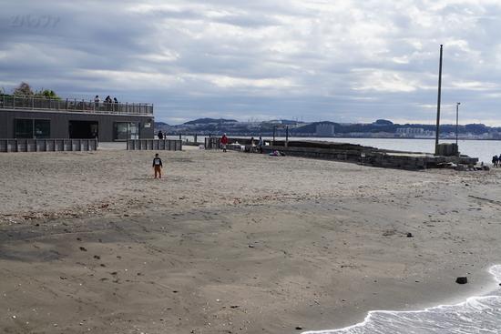 猿島の砂浜