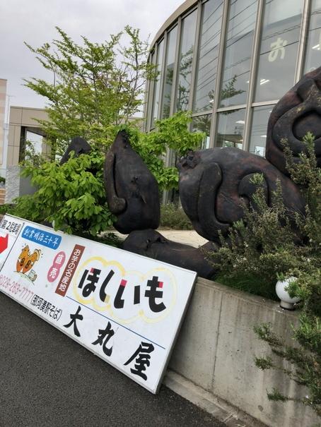 茨城県にある干し芋の大丸屋