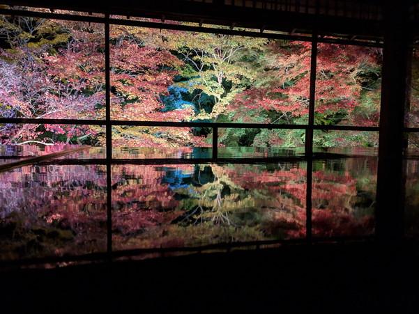 ライトアップされた紅葉の景色が鏡面仕上げされたテーブルに反射