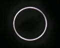 [金環日食]金環日食をしっかりと観る事が出来ました(^_^)
