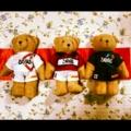 [浦和レッズ][テディベア][ぬいぐるみ]2012シーズン浦和レッズバージョンテディベア!