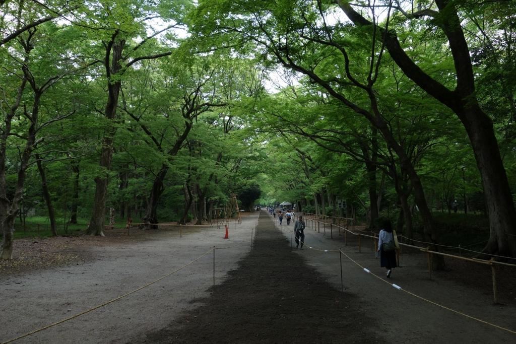 f:id:UrushiUshiru:20170402173454j:plain