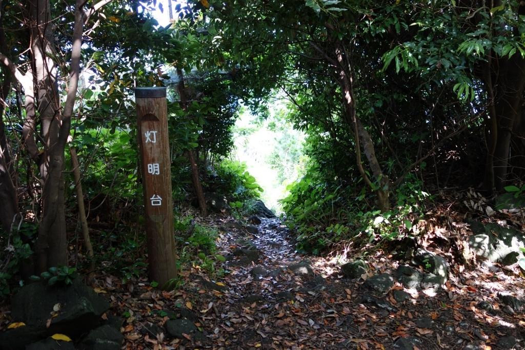 f:id:UrushiUshiru:20170604234050j:plain