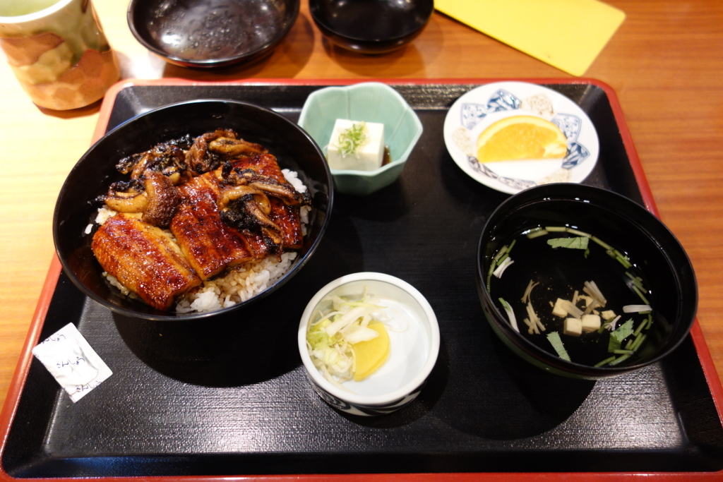 f:id:UrushiUshiru:20171209234220j:plain